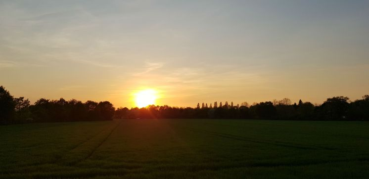 Mamawelt Sundown