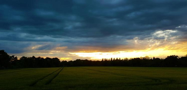 Mamawelt Sky 904