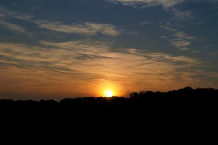 Mamawelt Sun375