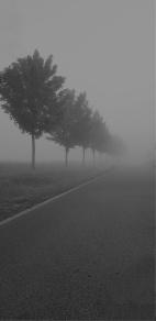 Mamawelt Nebel-518
