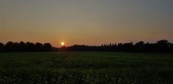 Mamawelt Sun-525