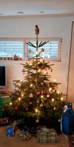 Weihnachten 2018 Weihnachtsbaum Schwiegereltern
